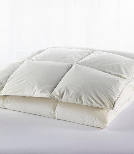 Box Stitch Goose Down Comforter Warm