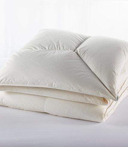 set ducks comforters comforter unlimited warm plaid p multi bedding