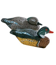 Coastal Decoy, Wood Duck