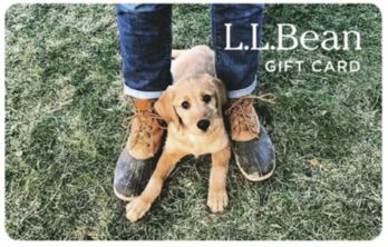 Puppy with Boots