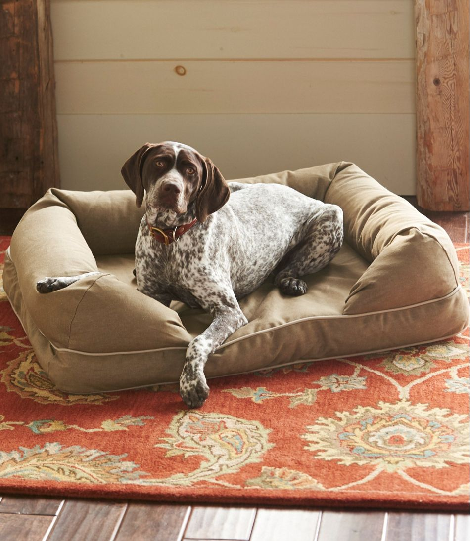 L.L. Bean Dog Bed Review: What to Know Before You Buy