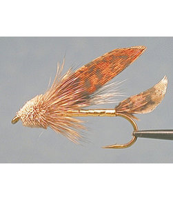 Muddler Minnow 2 Pack