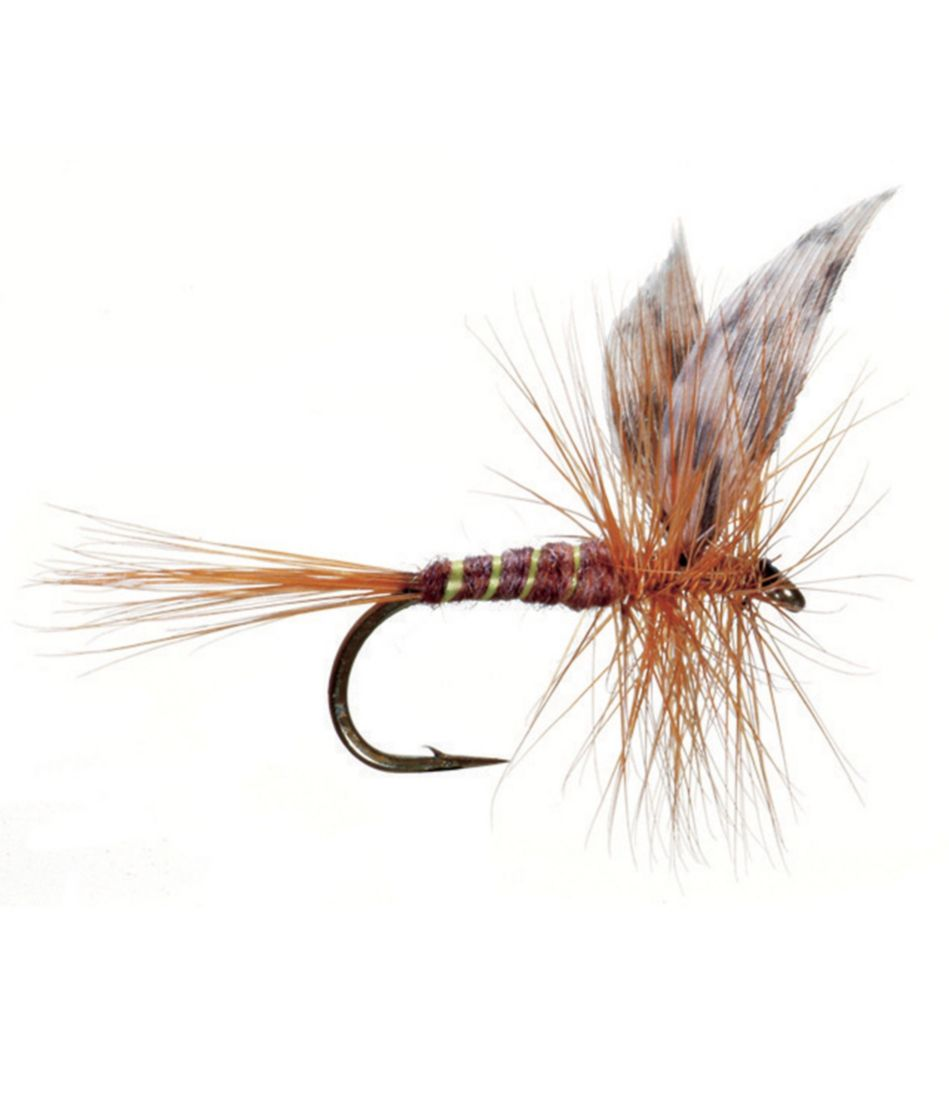 March Brown American 2 Pack