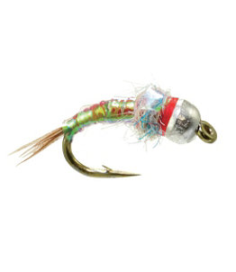 Rainbow Warrior Egan's Tungsten 2 Pack