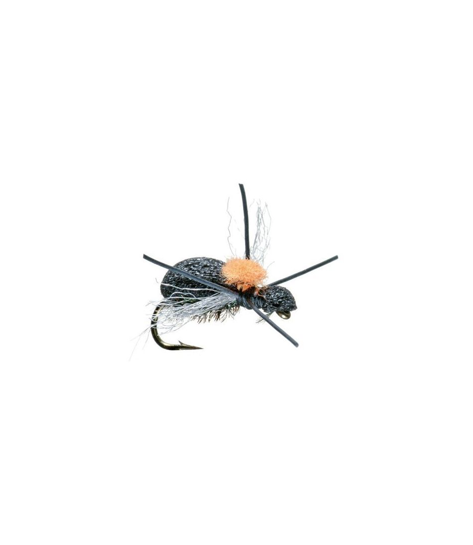 Fat Head Beetle 2 Pack