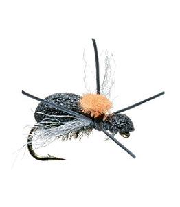 Fat Head Beetle 2 Pack