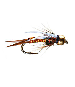 Hot Wired Prince Tungsten 2 Pack