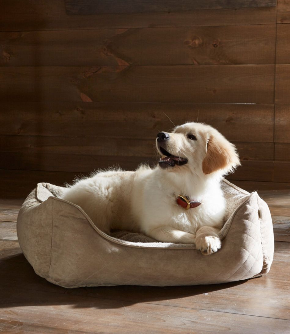 Comfort Couch Pet Bed Set