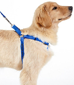Personalized Pet Harness