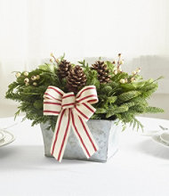 Woodland Snowberry Centerpiece