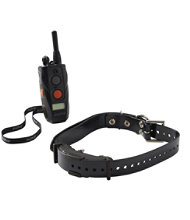 Dogtra Arc Training System with Dog Collar
