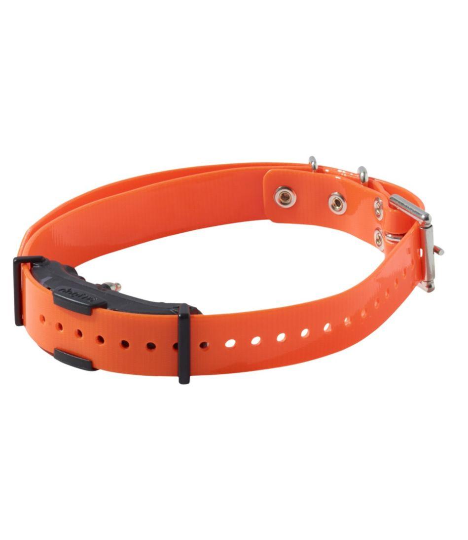Dogtra Arc Spare Dog Collar