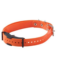 Dogtra Arc Spare Dog Collar