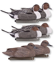 Tanglefree Pro Series Magnum Decoys, Pintail Combo Pack