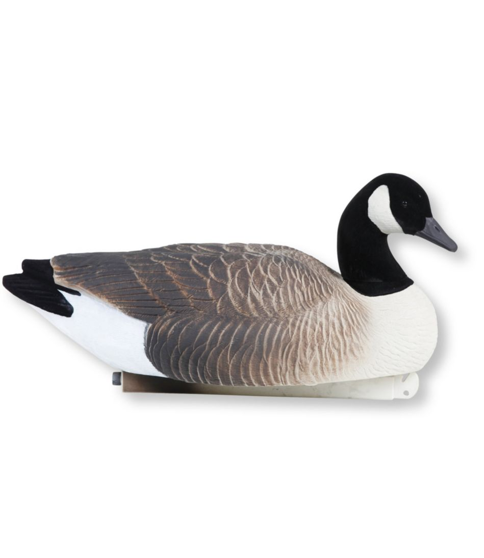 Tanglefree Pro Series Canada Geese Floating Decoys, 4 Pack