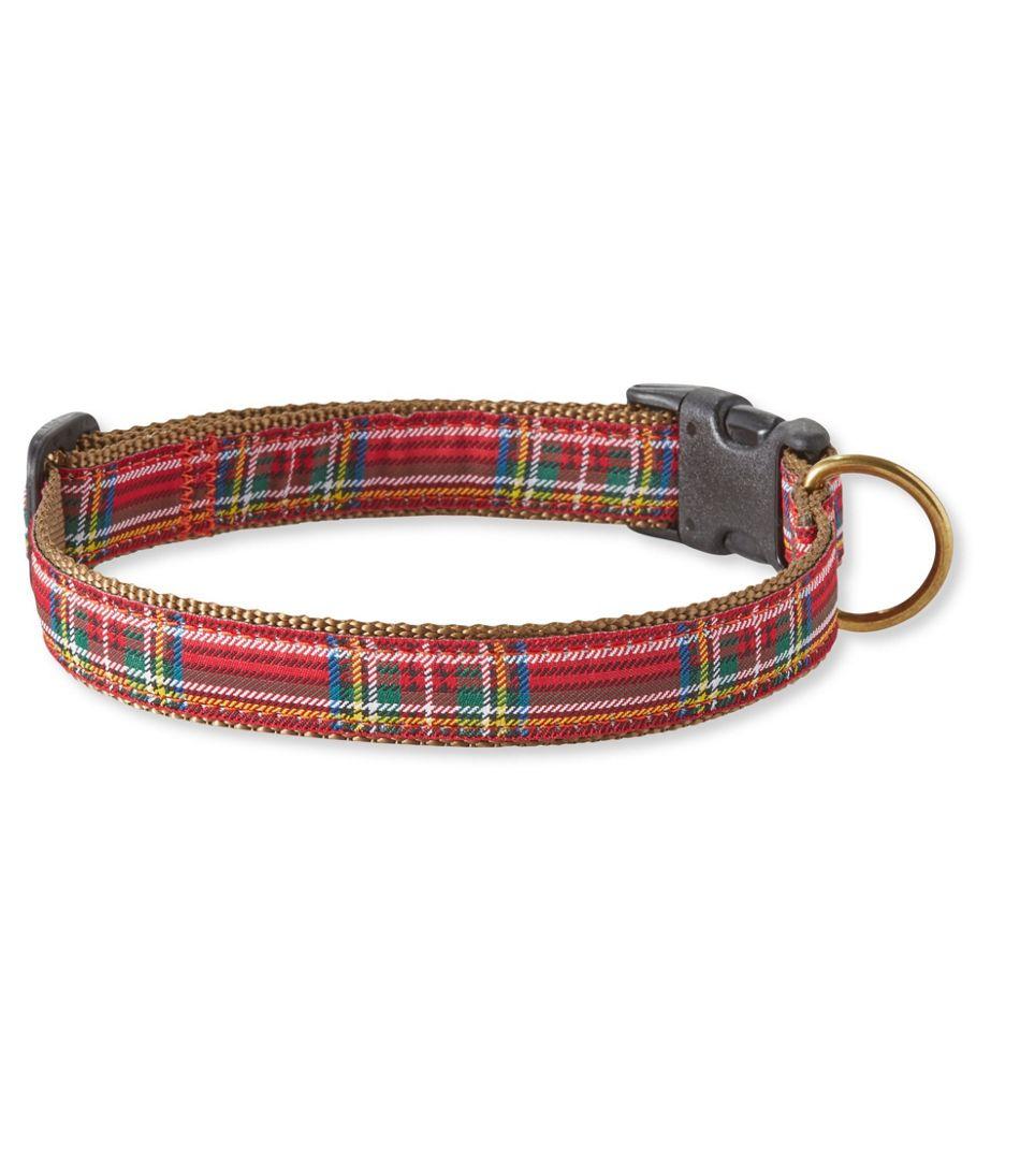 Novelty Ribbon Dog Collar