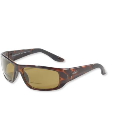 L.L.Bean Deluxe Polarized Performance Bifocal Sunglasses, Large