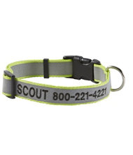 Personalized Pet Collar, Reflective