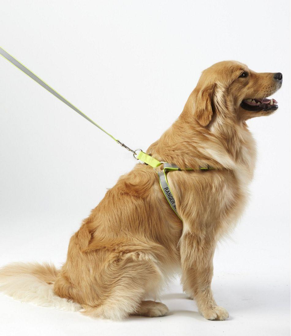 Personalized Reflective Pet Harness