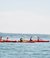 Casco Bay Kayak Tour with Maine Audubon