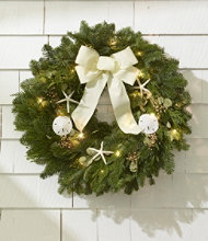 Coastal Evergreen Christmas Wreath, Lighted 24""