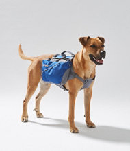 Trekker Backpack for Dogs
