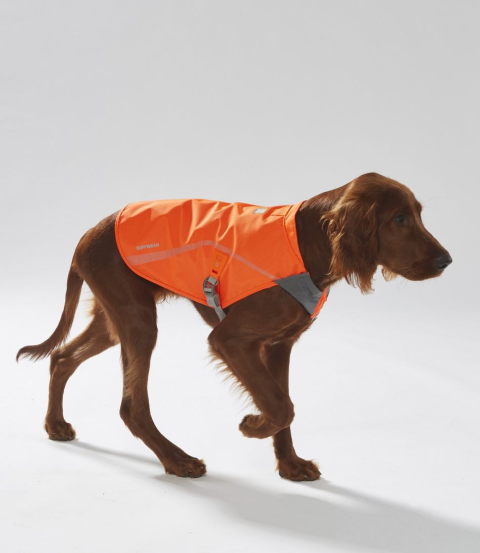 Track Jacket for Dogs
