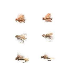 Umpqua Six-Piece Caddis Dry Fly Selection