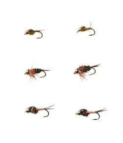 Umpqua Six-Piece Bead Head Nymph Selection