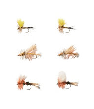 Umpqua Six-Piece Pocket Water Dry Fly Selection