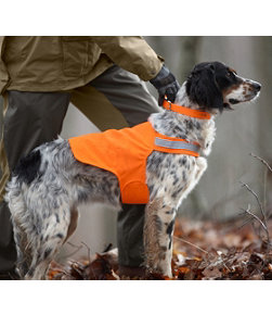 Orange Safety Dog Vest