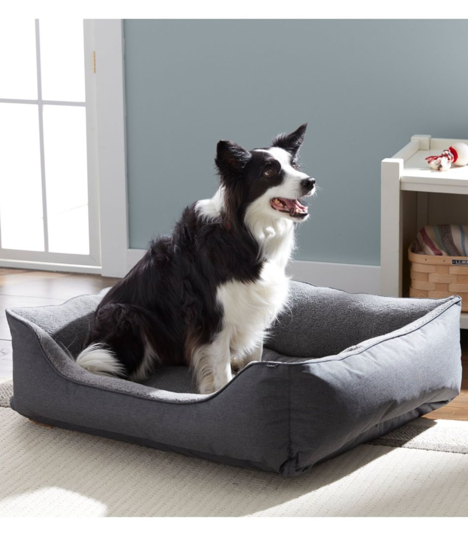 Everydog Couch Bed