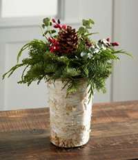 Rustic Birch Vase
