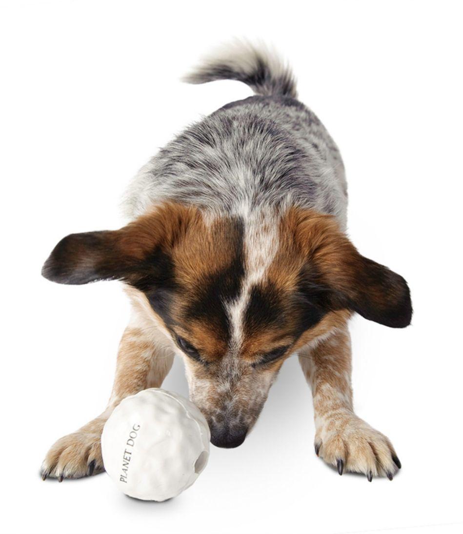 Orbee Tuff Snowball Dog Toy