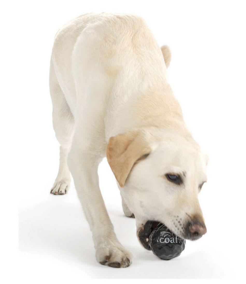 Orbee-Tuff Coal Dog Toy