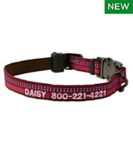 Personalized Explorer Collar