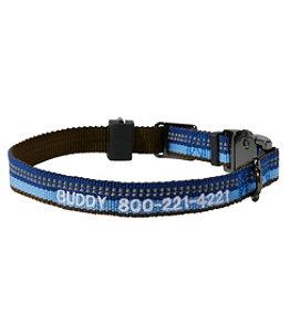 Personalized Explorer Collar
