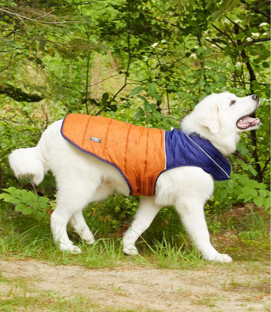Mountain Classic Dog Parka, Colorblock