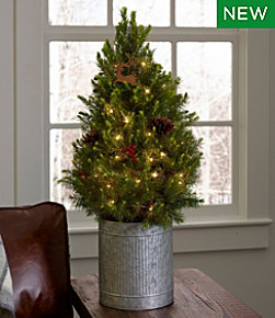 Ll Bean Christmas Trees.Holiday Wreaths And Christmas Decorations