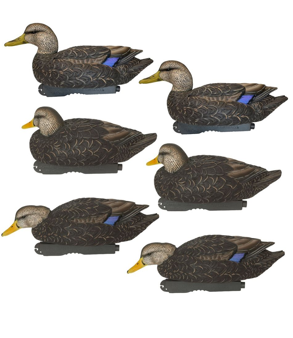 Avery Pro-Grade Decoys, Black Duck 6-Pack