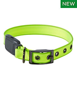 NiteDog® Rechargeable LED Dog Collar