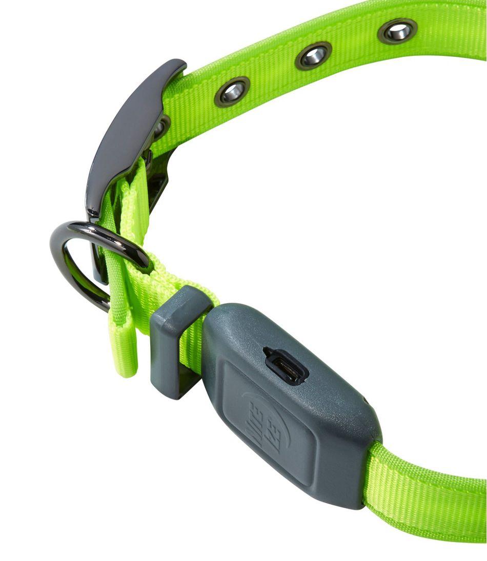 NiteDog® Rechargeable LED Dog Collar