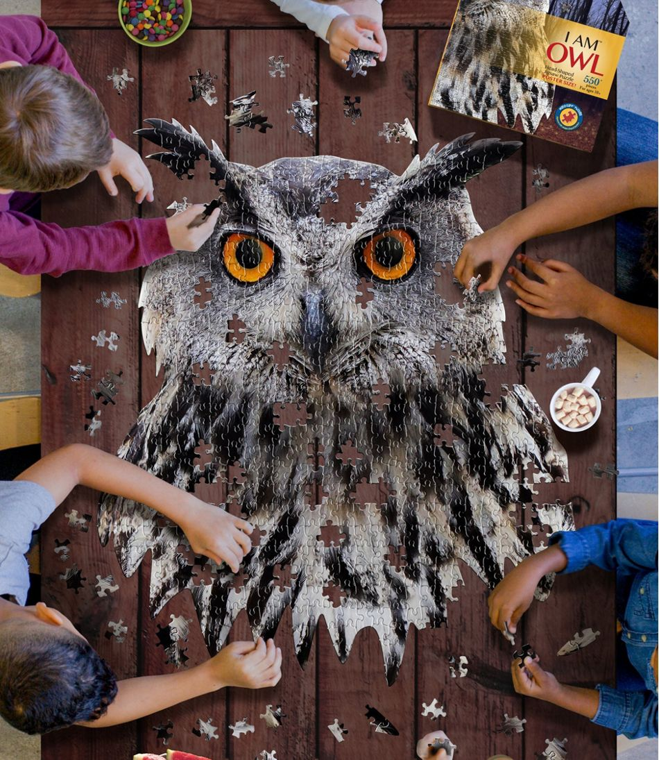 Poster Size Owl Puzzle, 550 Pieces