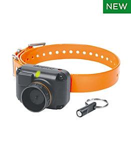Dogtra STB Beeper Collar